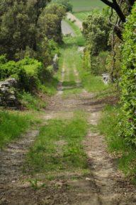 sentier Montségur
