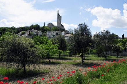 Chamaret village et Tour, coquelicot